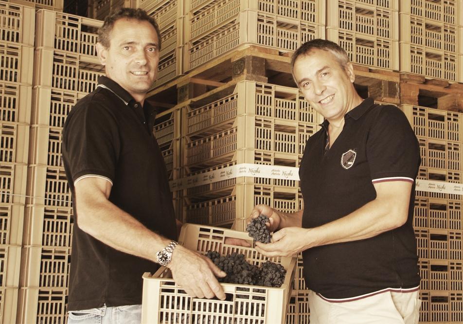 Società Agricola Nicolis Angelo e Figli snc